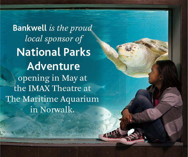 Maritime Aquarium Bankwell local sponsor